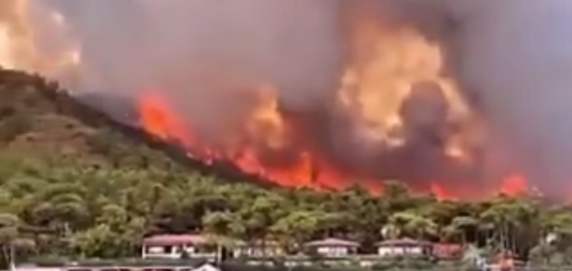 Лісові пожежі в Туреччині спалахнули з новою силою