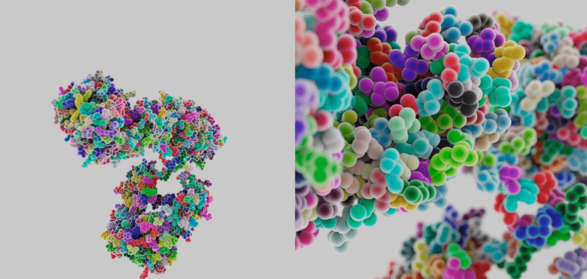Важность терапии иммуноглобулинами при первичных иммунодефицитах