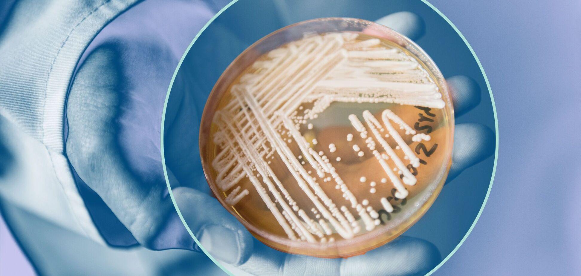 Резистентні грибки можуть передаватися від людини людині