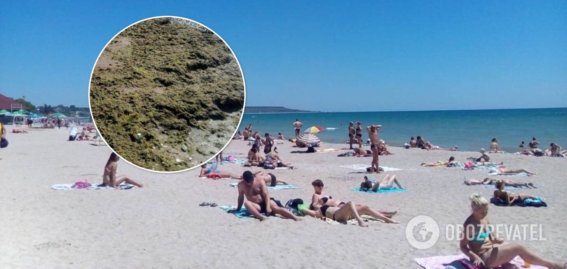 Тонны водорослей покрыли пляжи популярного одесского курорта. Фото