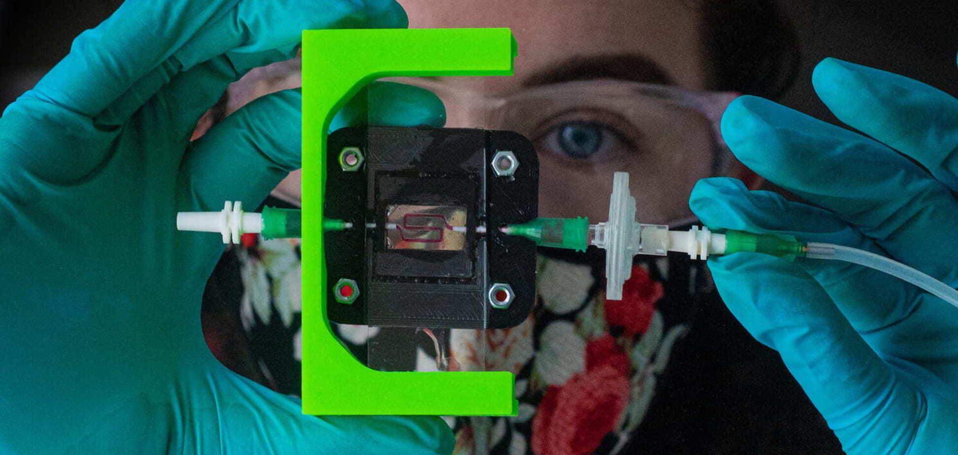 Вырабатывающий инсулин имплантат: надежда для диабетиков
