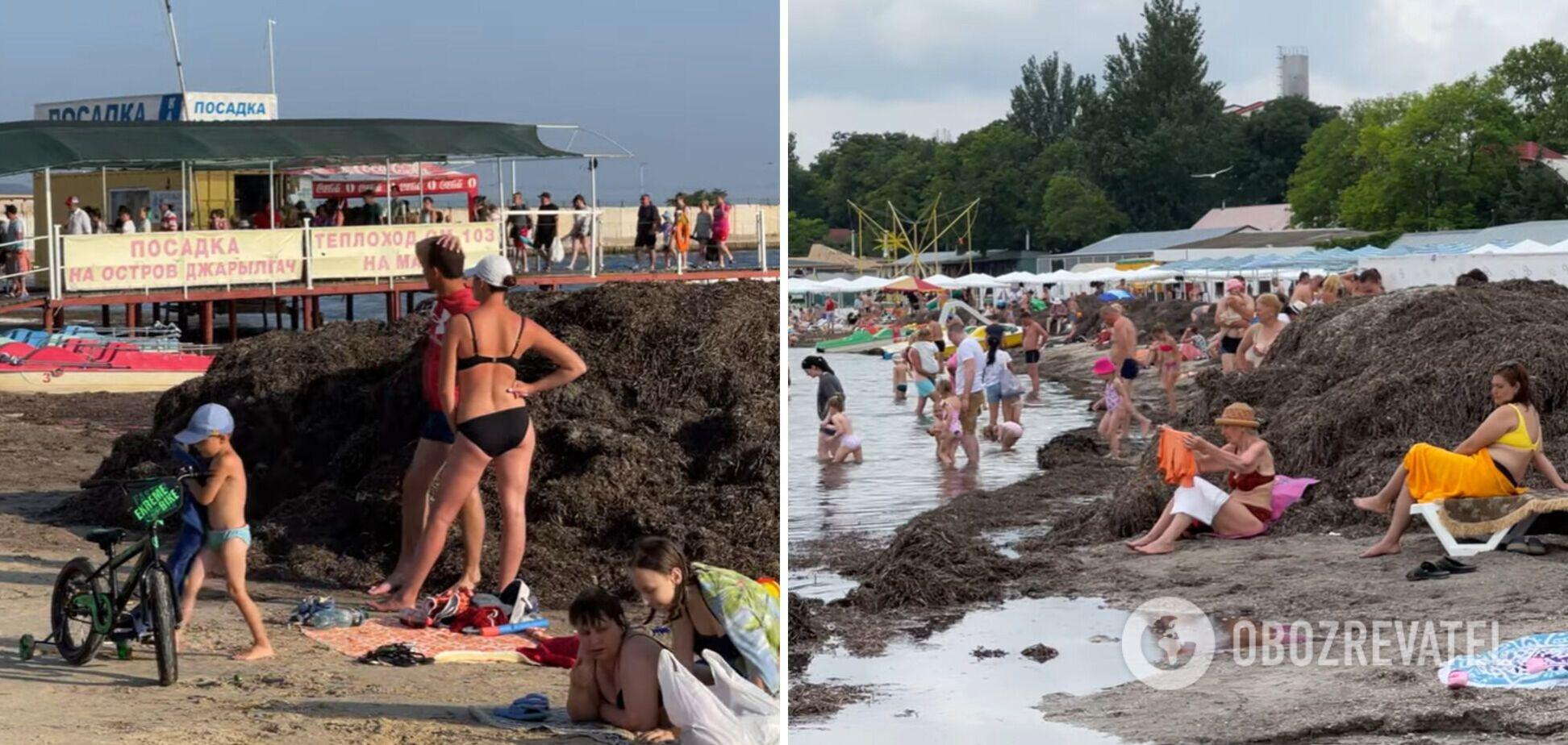 Медуз и морских блох нет, но запах как на ферме: турист назвал главный минус отдыха в Скадовске