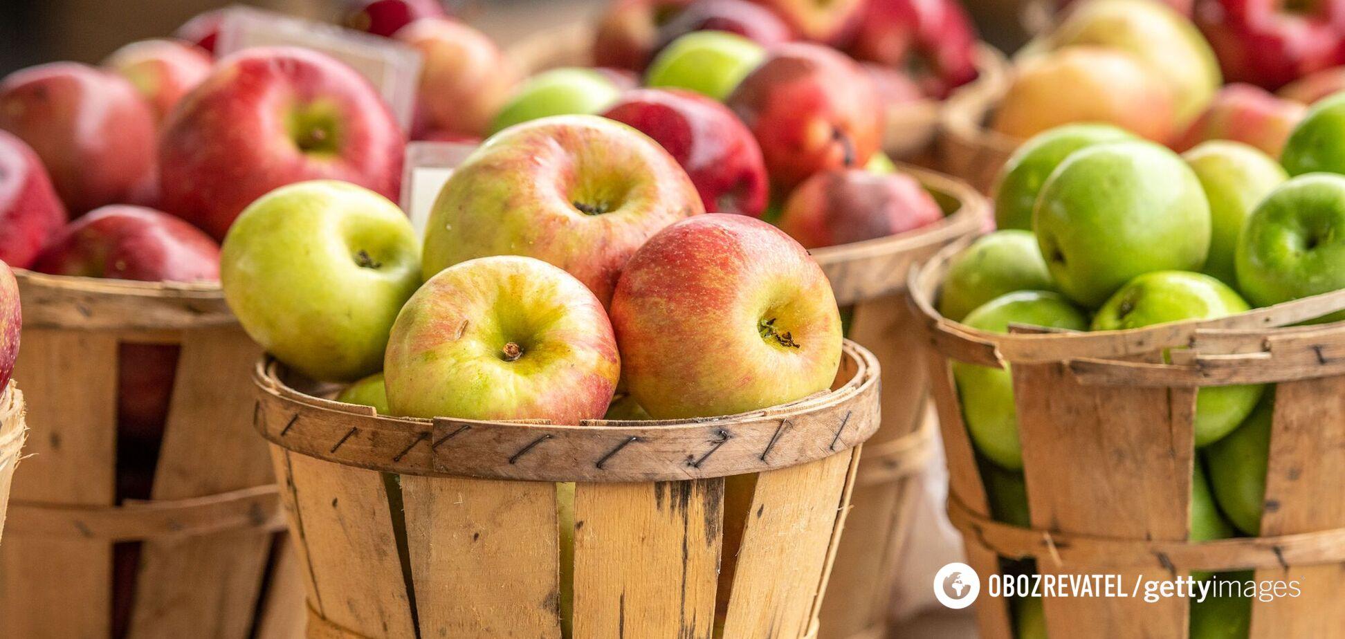 Врожаю яблук, винограду, сливи, динь в Україні загрожує знищення, – фермерка