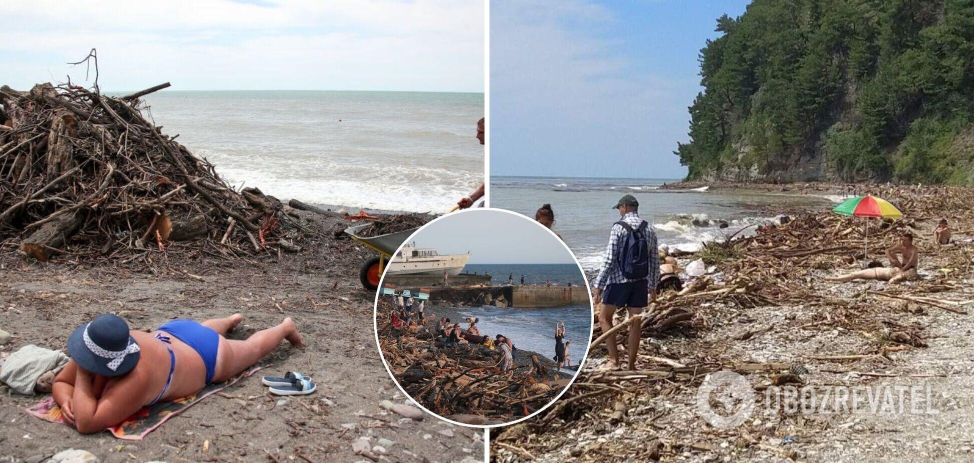 В Сочи туристы загорают прямо посреди мусора, вынесенного стихией на пляж. Фото отдыха 'по-русски'