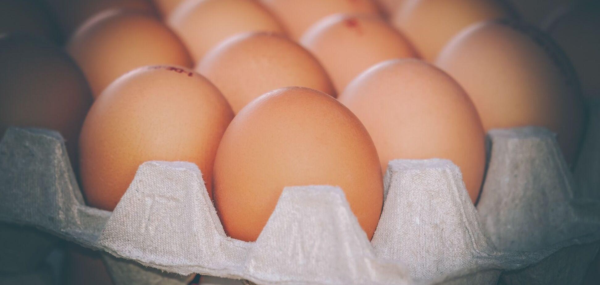В Украине яйца могут взлететь в цене почти вдвое: когда и сколько заплатим
