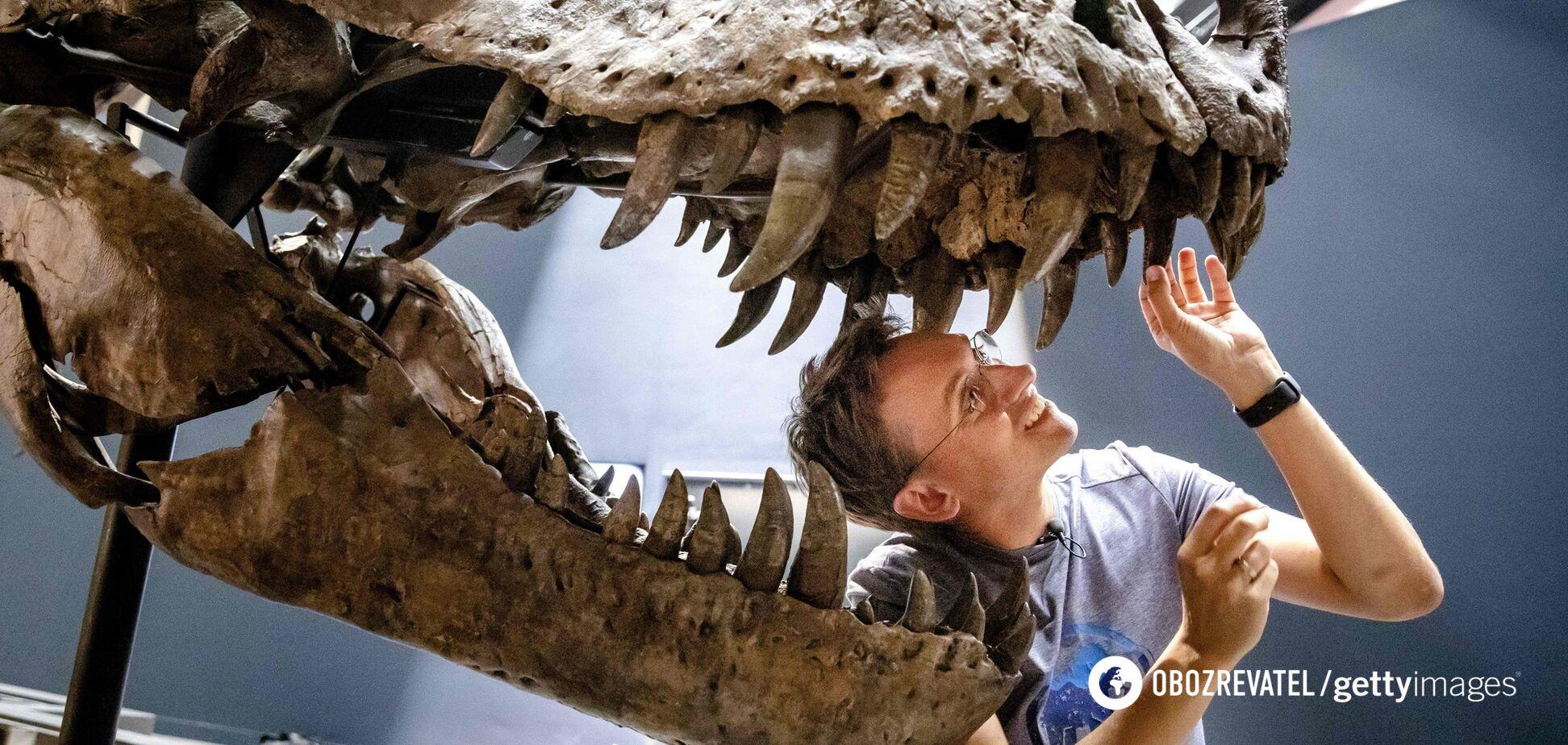 В США нашли останки динозавра, который жил 103 млн лет назад. Фото
