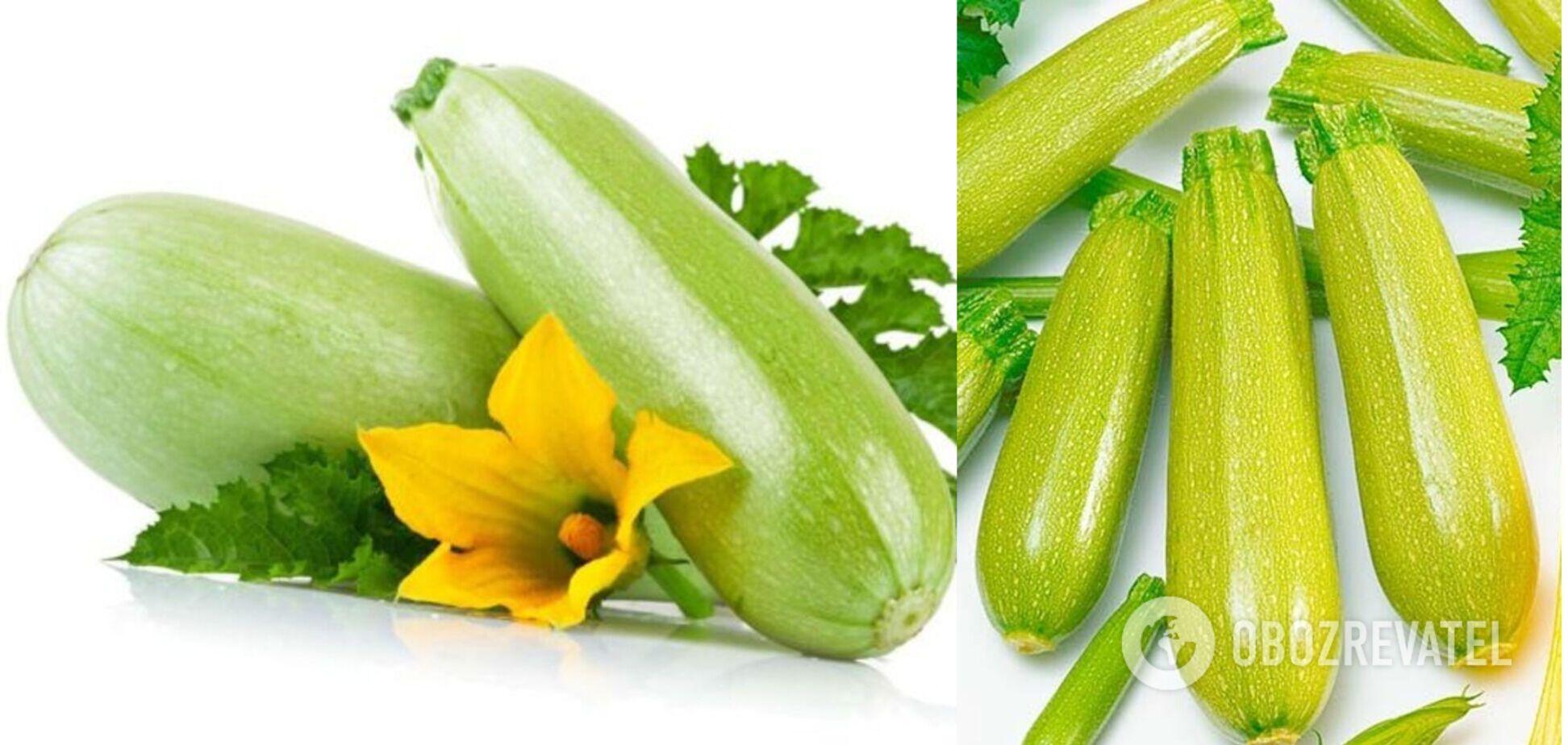 Кабачок – недооцінений овоч: як вибрати найкорисніший