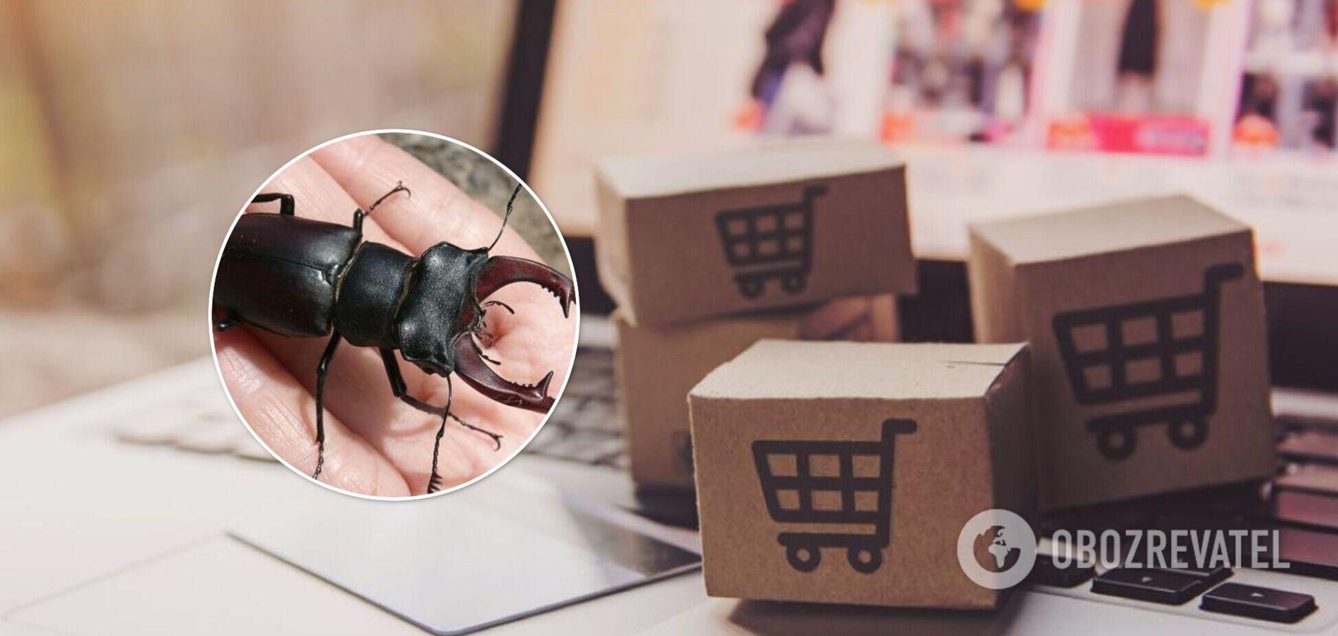 Жука продають в інтернеті