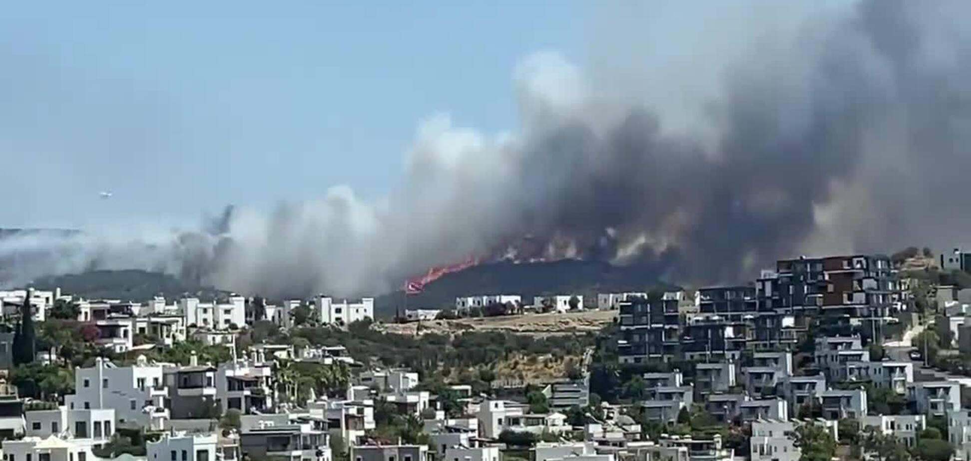 Пожежі в Туреччині досягли Бодрума