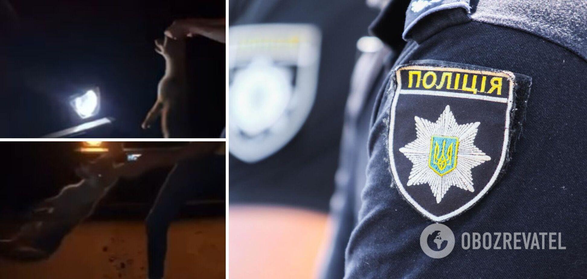 На Буковині компанія молоді познущалася з лисеняти, у поліції відреагували. Фото