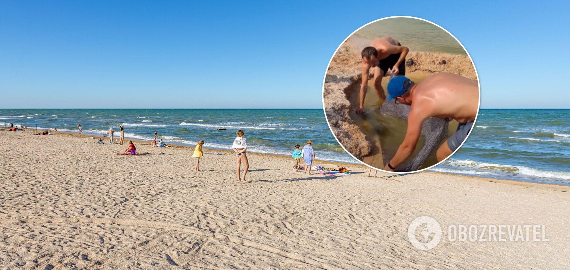 На Азовском море туристы нашли необычный способ спасения от назойливых медуз. Видео