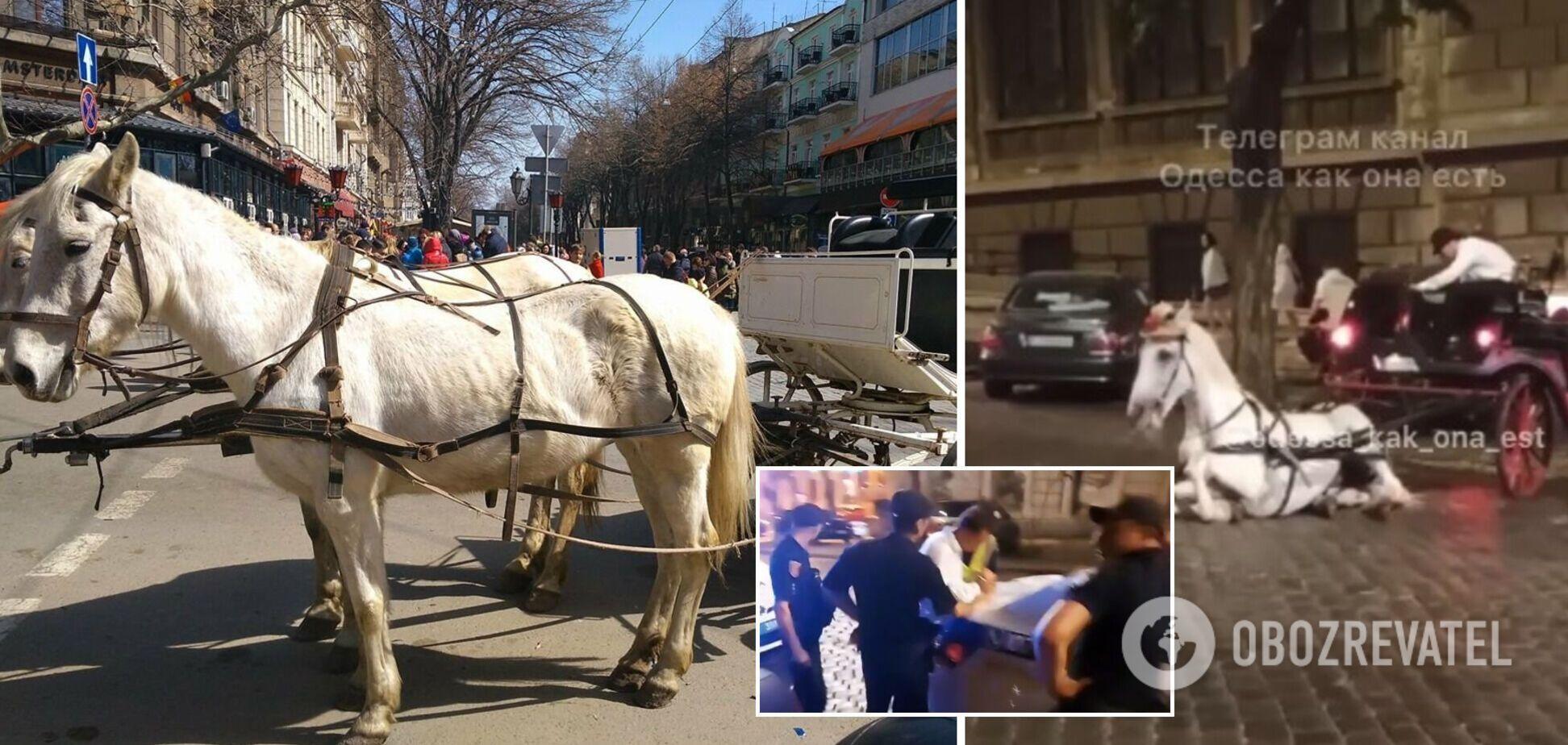 В центре Одессы лошадь повредила ногу и упала посреди дороги: владельца обвинили в жестокости. Видео