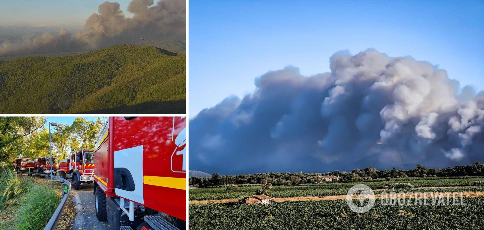 Сгорело более 5000 гектаров земли