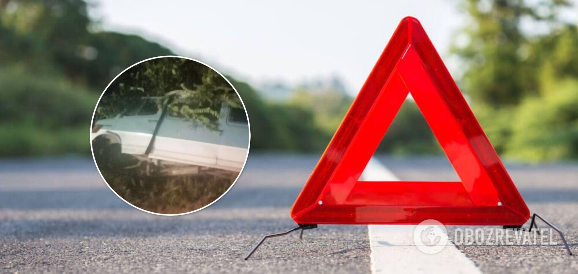 На Николаевщине водитель устроил смертельное ДТП и сбежал. Фото