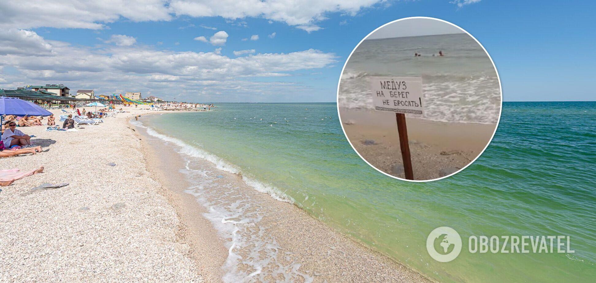 Азовское море снова атаковали медузы: туристка показала видео из курортной Кирилловки