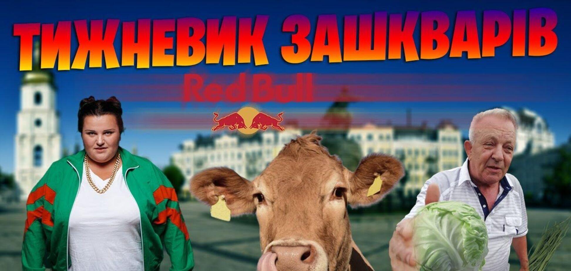 'Слуга' - диджей, корова в бассейне и ексмер в чужом огороде. 'Зашквары' недели от Конституционно-Правового Конгресса
