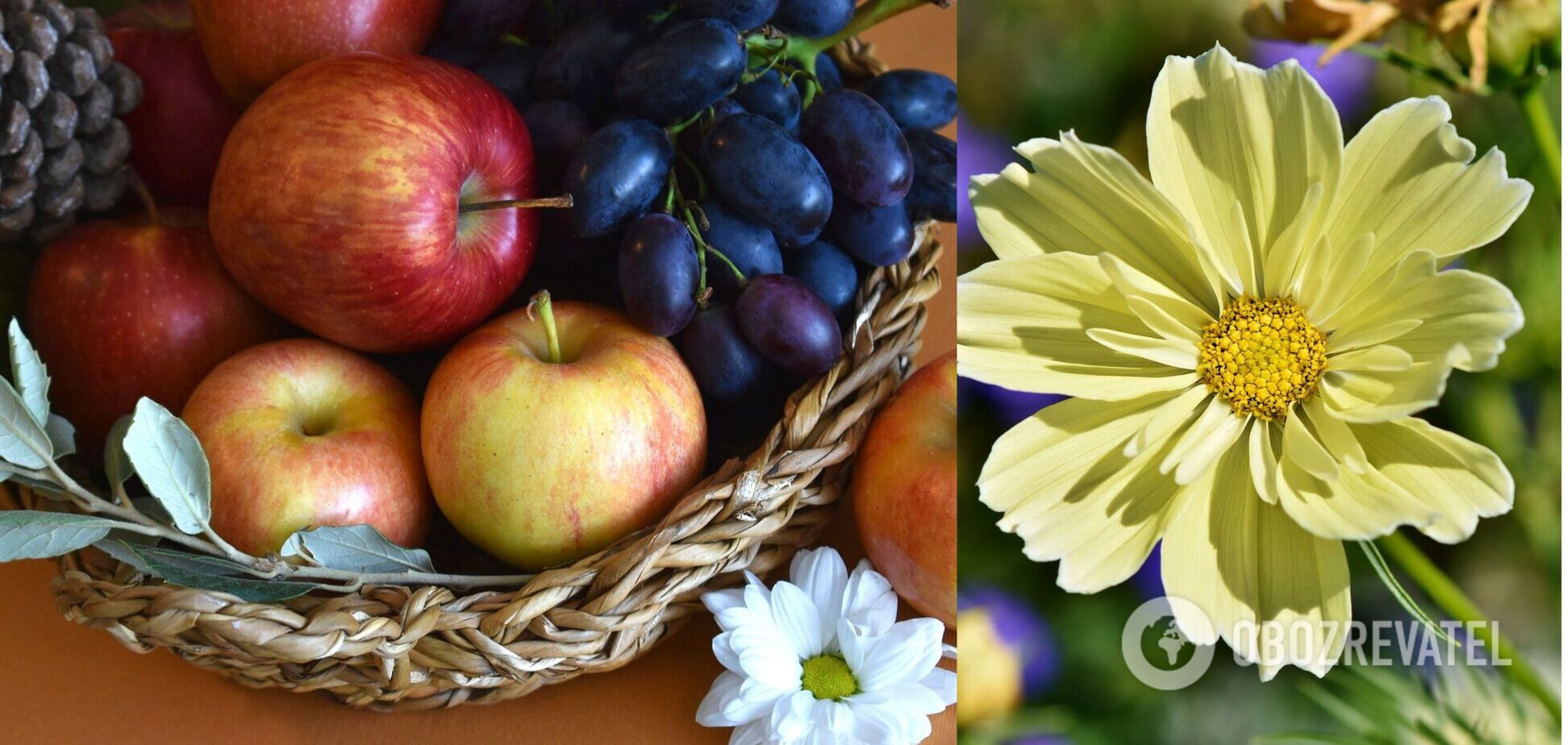 Що повинно бути в святковий кошику на Яблучний Спас