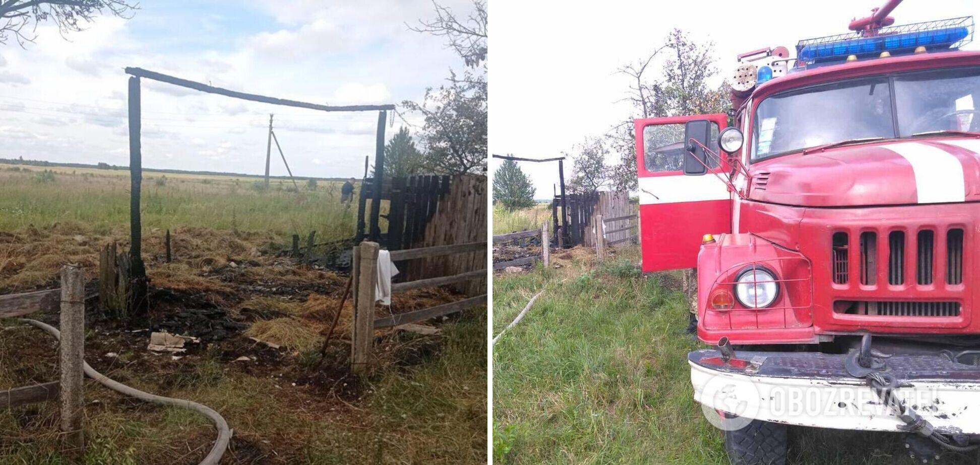 На Житомирщині трагічно загинула 6-річна дитина: в поліції розкрили подробиці. Фото