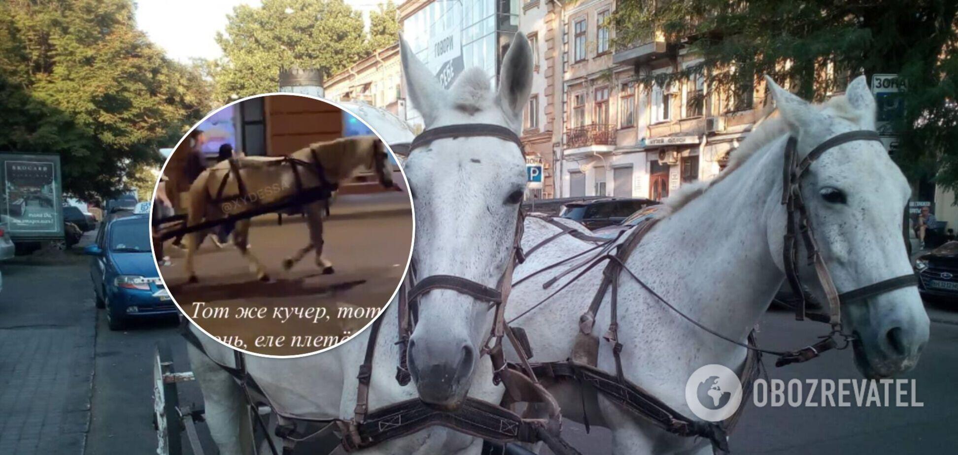 В Одесі туристів знову катають на коні, що зламав ногу тиждень тому. Відео