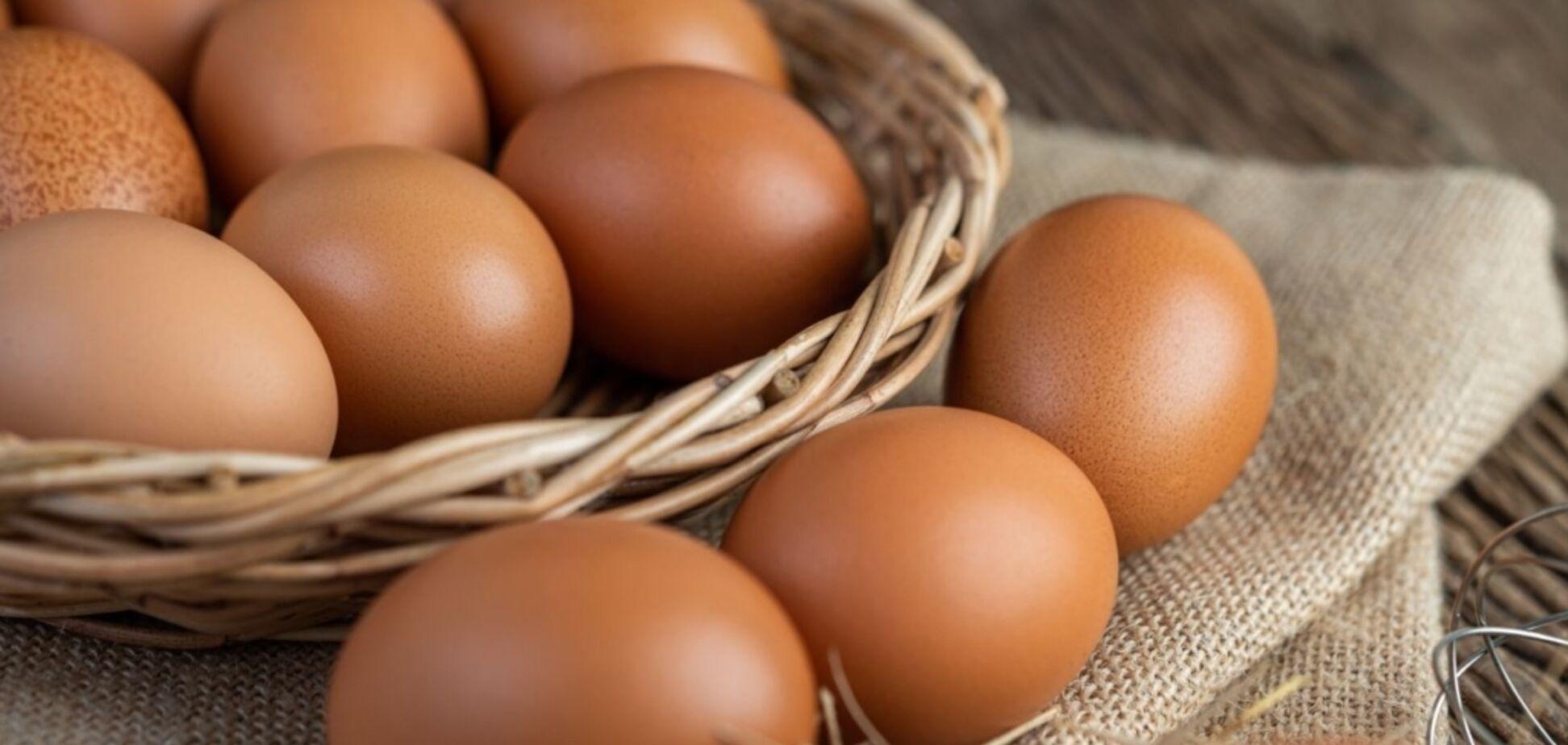 В Україні дорожчають яйця через тиск НАБУ на 'Авангард' – Poultry World