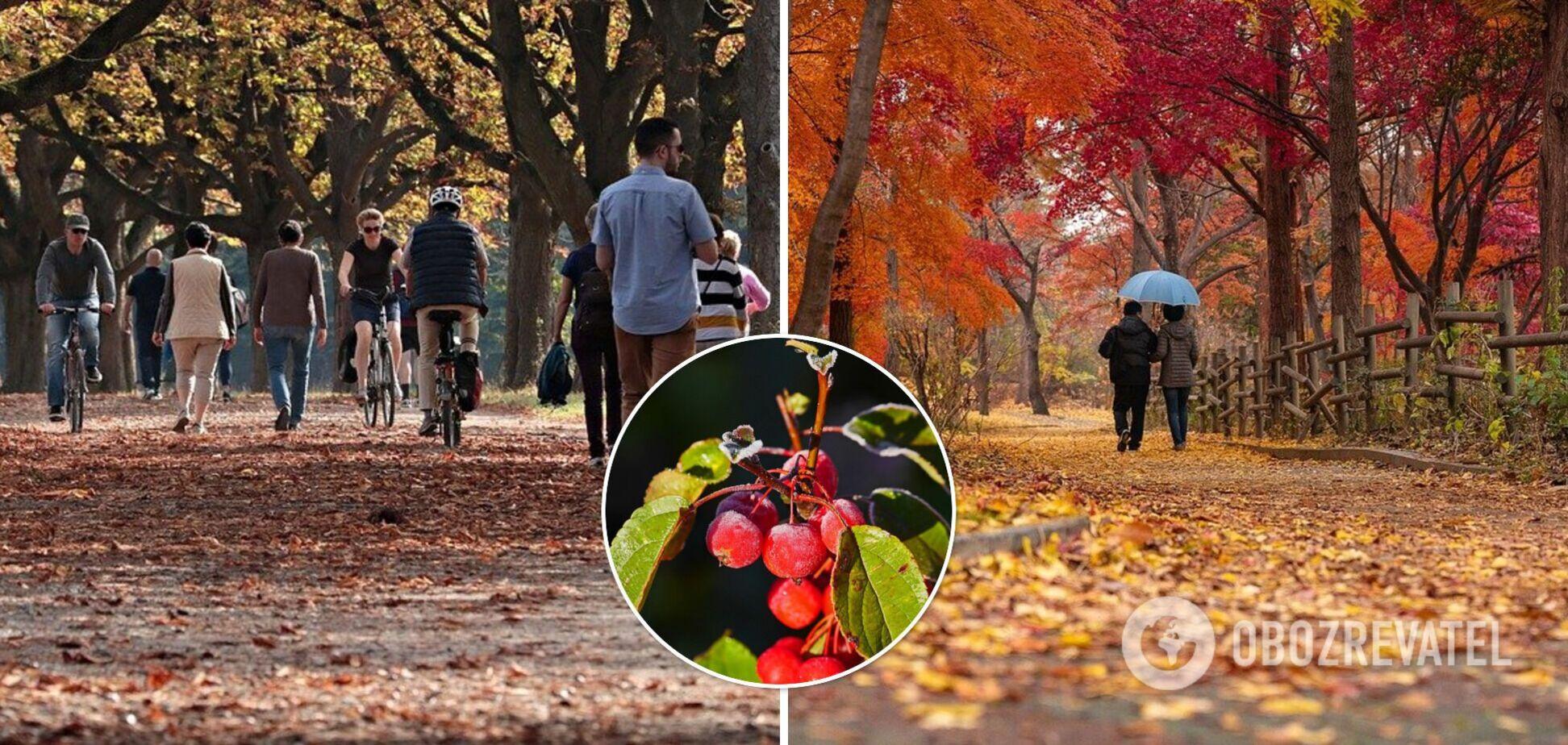 Спека у вересні і заморозки в середині жовтня: народний синоптик дав прогноз на осінь-2021