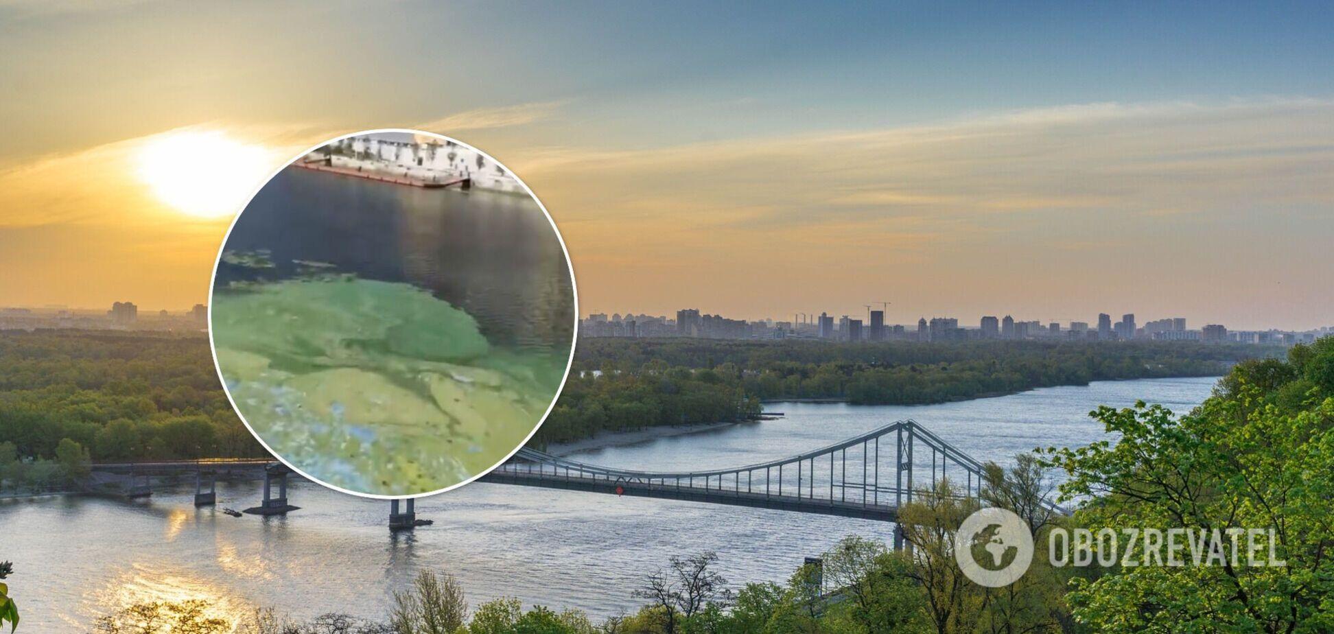Дніпро в Києві позеленів і покрився 'цвіллю', стоїть огидний запах. Відео