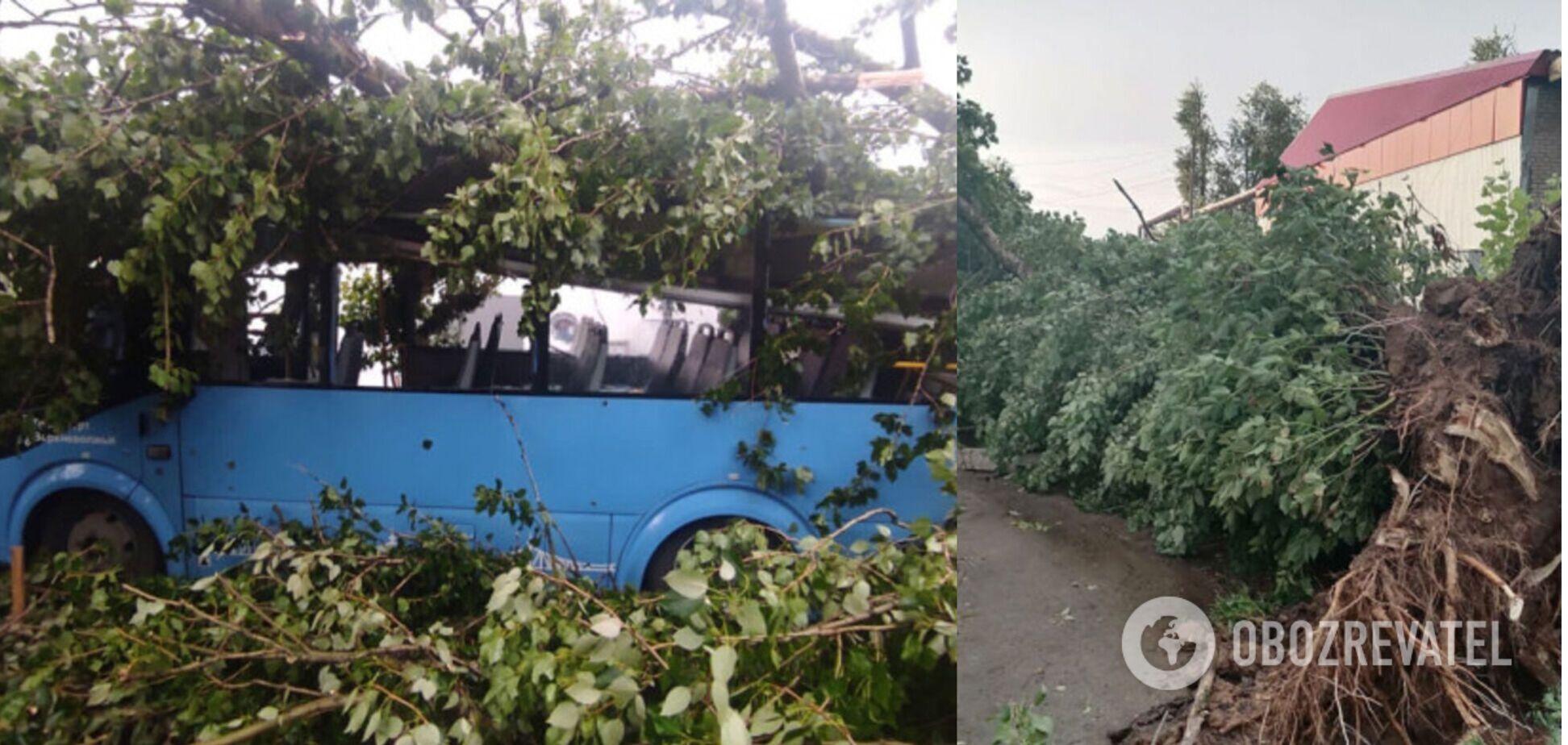 Трощив дерева і зносив дахи: в Росії пронісся потужний ураган, є загиблі. Фото і відео