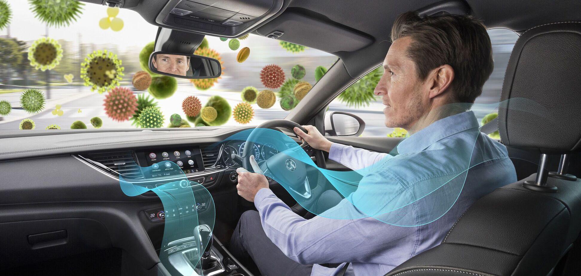 Амброзия в цвету: как водителю защитить себя и пассажиров