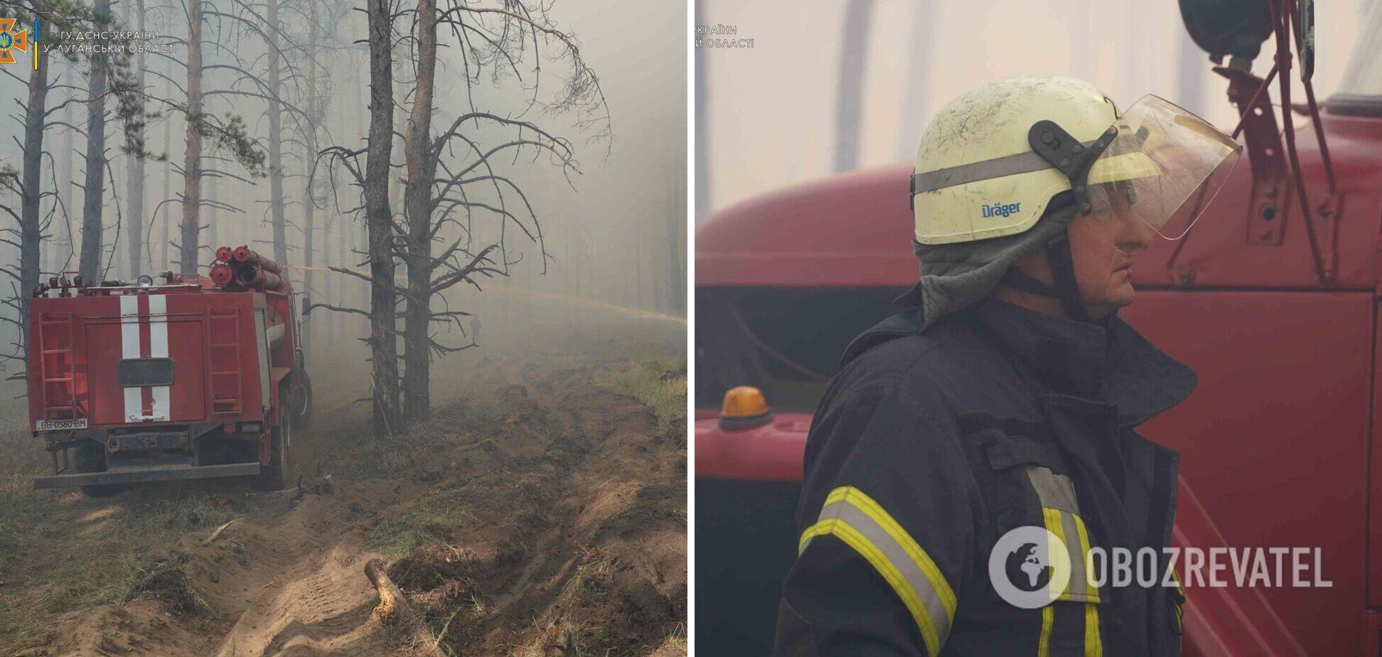 В Луганской области вспыхнул лесной пожар: первые подробности и фото