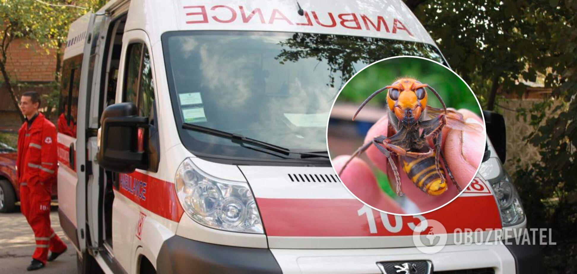 На Харьковщине мужчина пережил клиническую смерть из-за укуса шершня