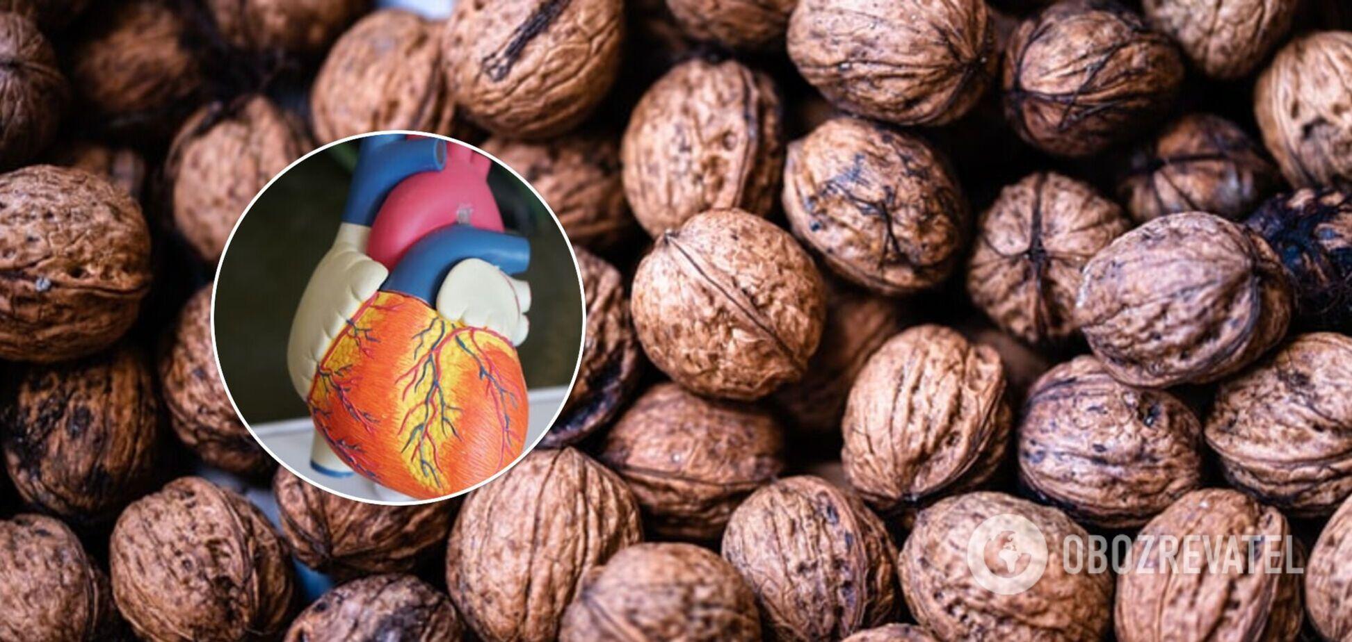 Горіхи можуть знизити рівень холестерину та ризик серцево-судинних захворювань: результати дослідження