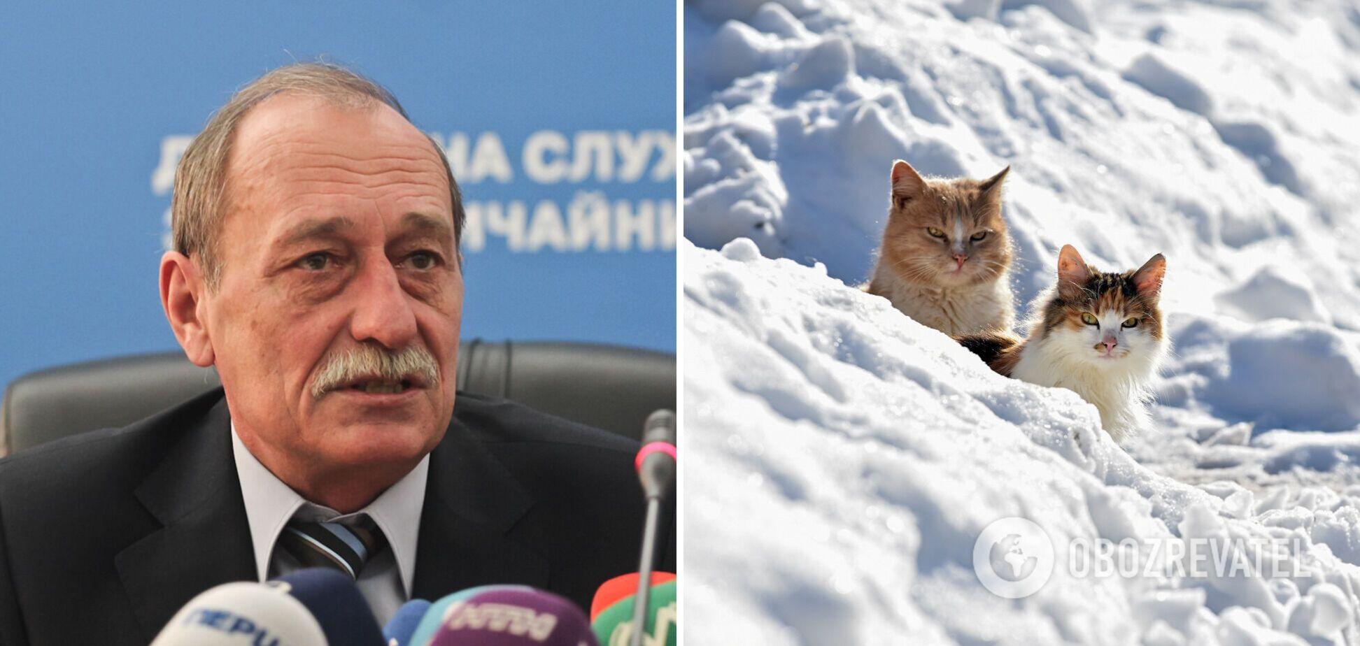 Кульбіда вважає, що зима в Україні може зникнути