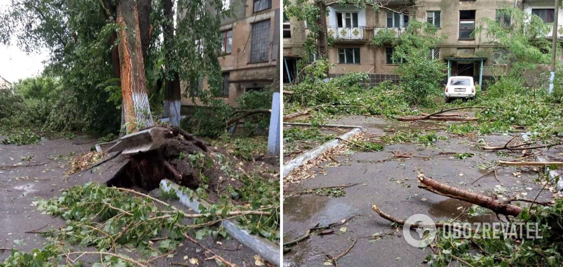 Ветер срывал крыши и валил деревья: в Одесской области пронесся мощный ураган. Фото