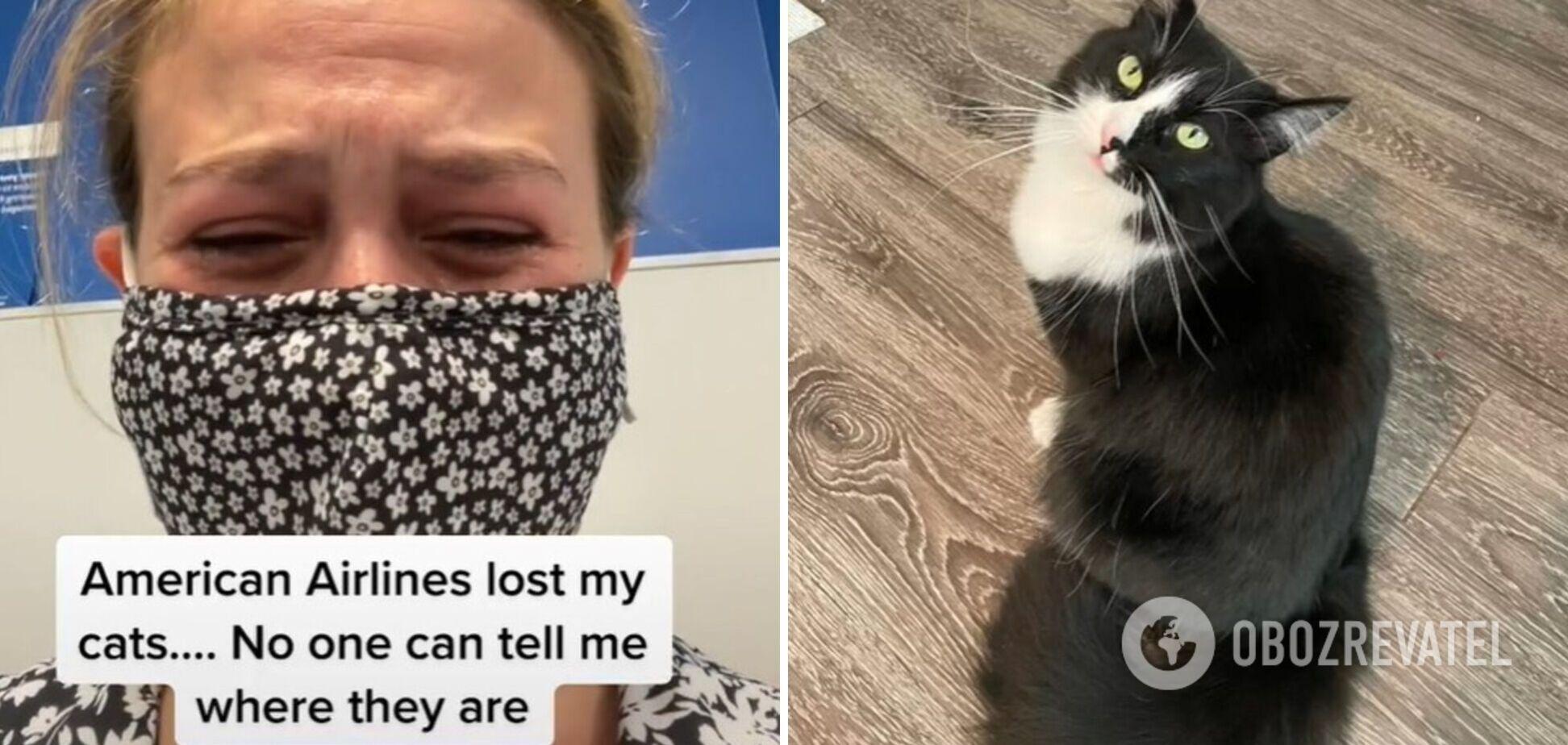 Женщина потеряла котов при перелете