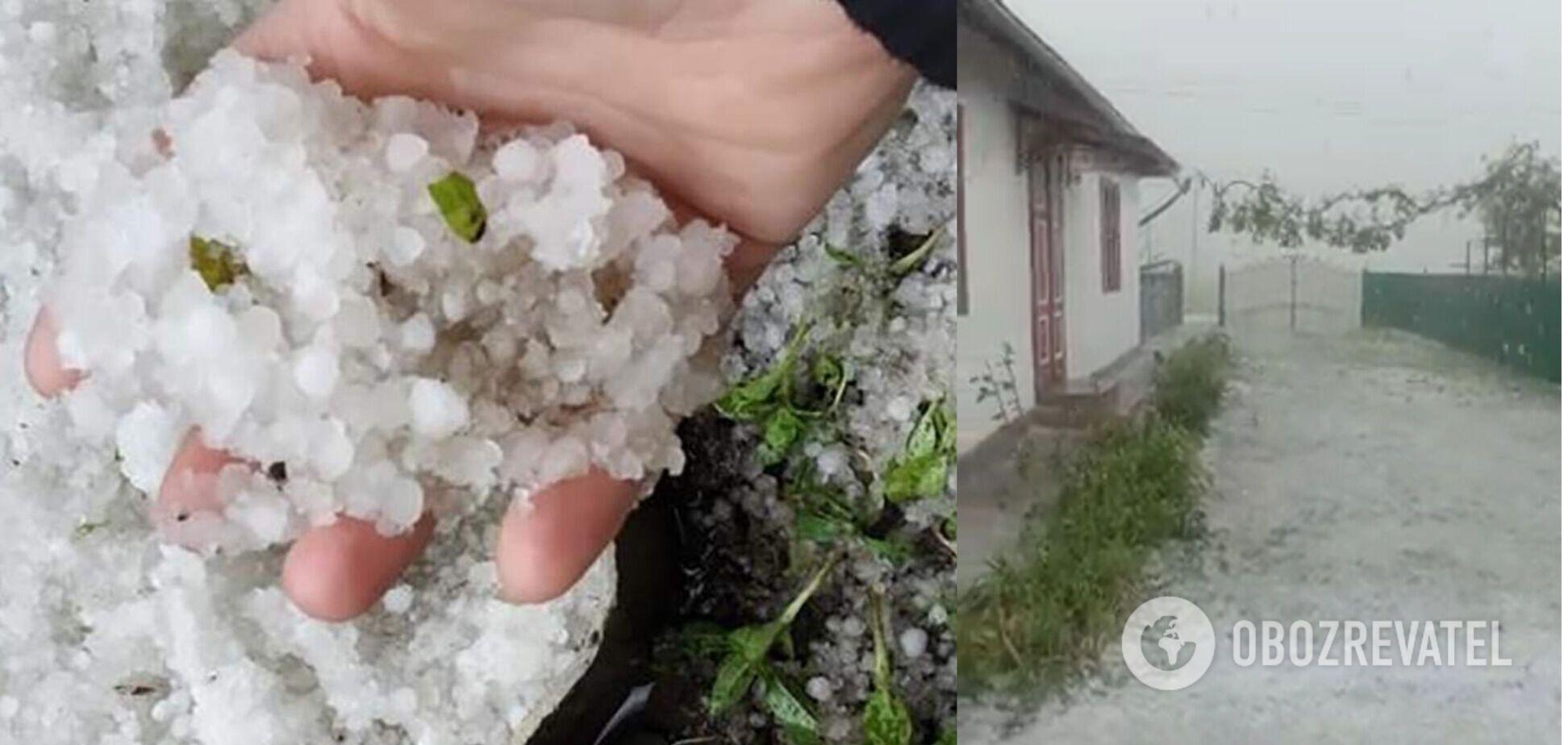 На Прикарпатье мощный ливень с градом уничтожил урожай. Фото и видео