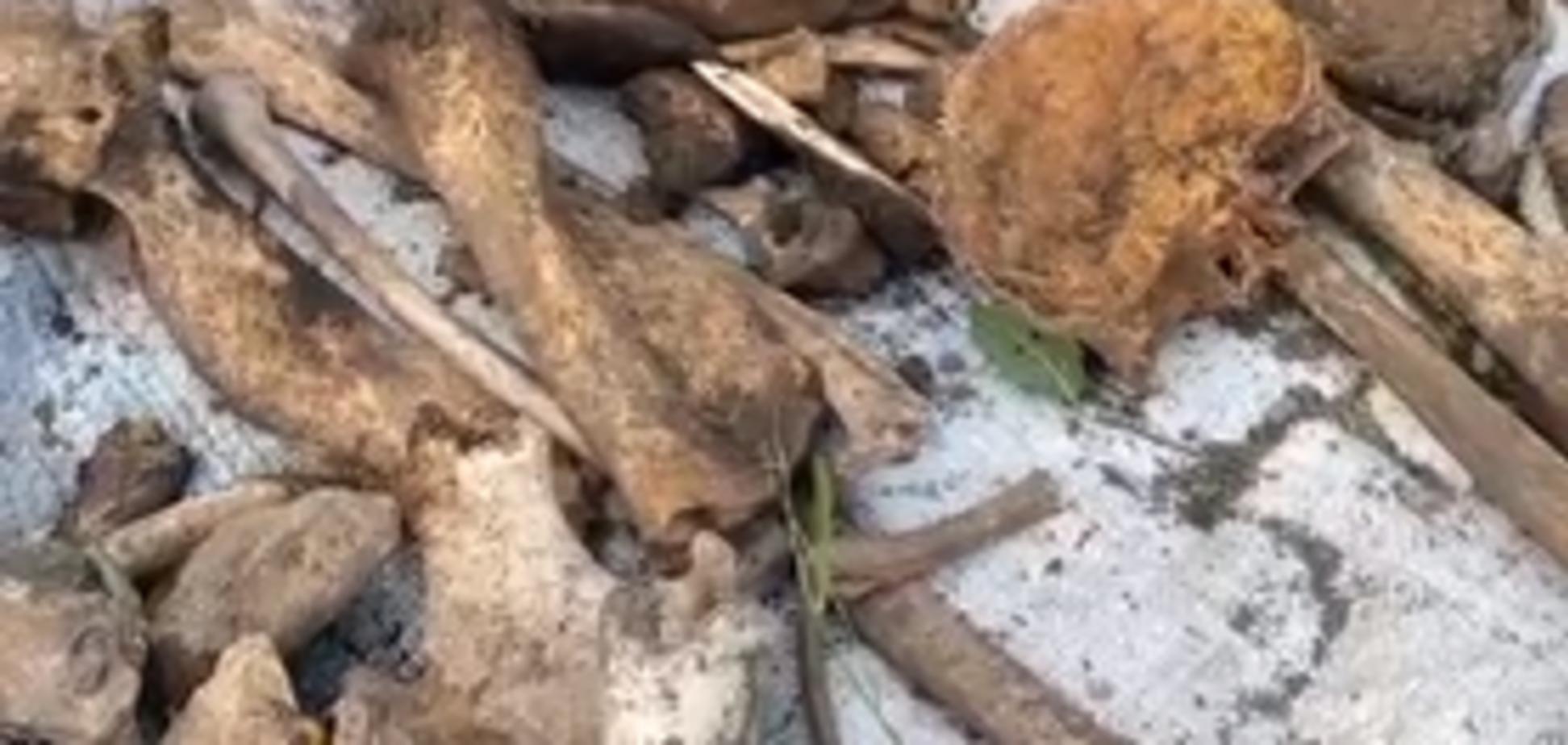 На Тернопільщині виявили останки хлопця, який загинув 18 років тому