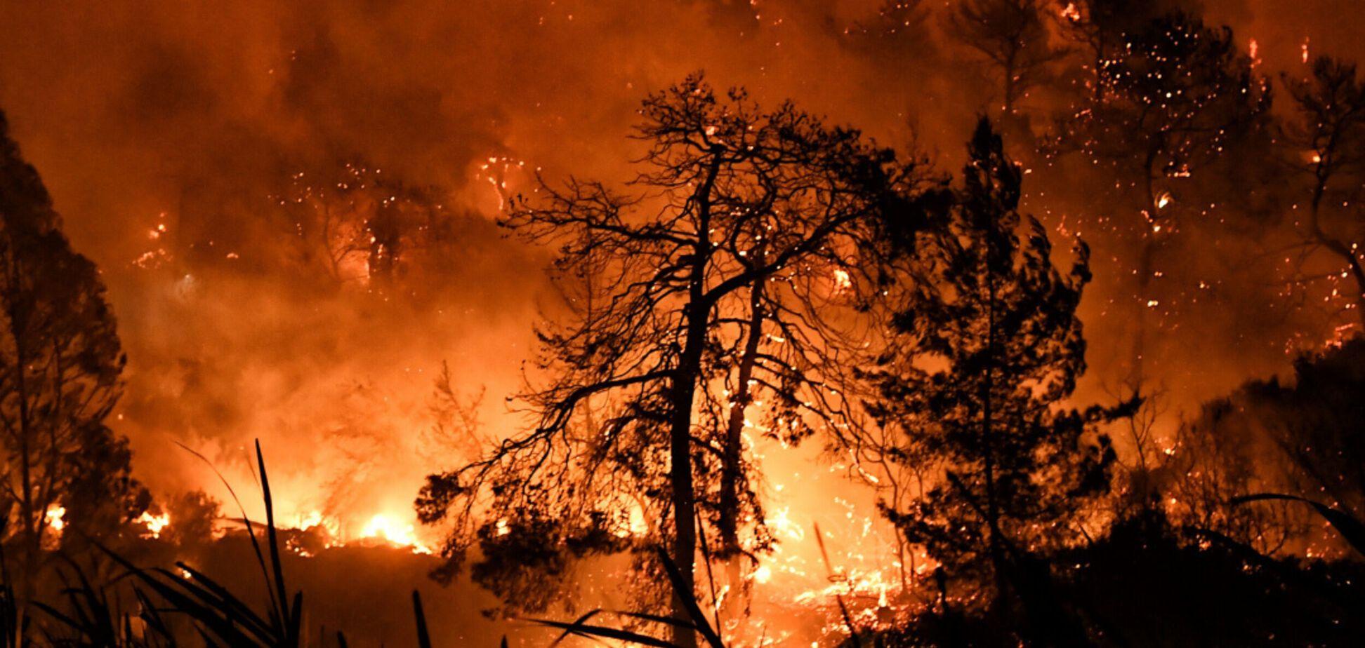 Пожары в Греции: горит лес в месте проведения античных Олимпийских игр