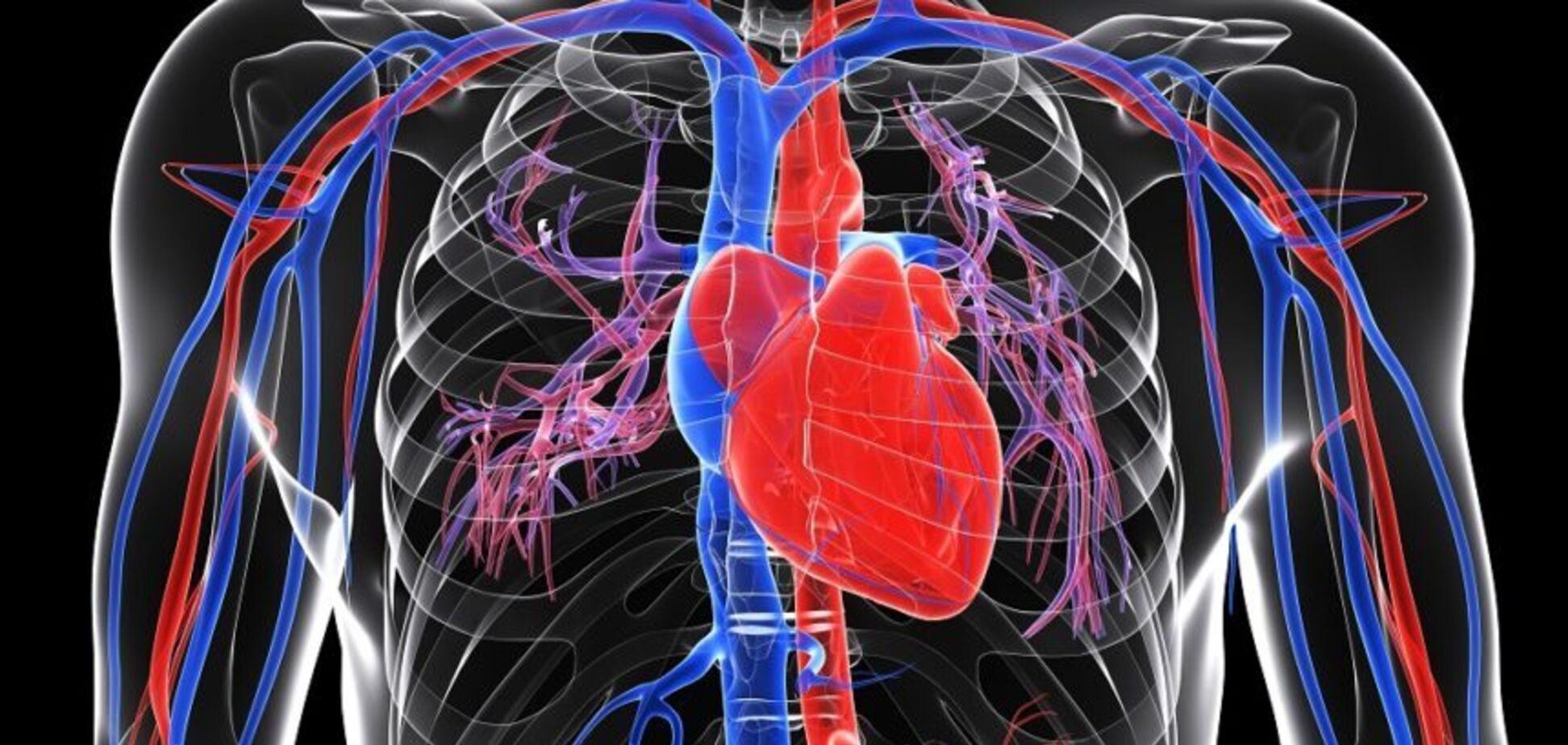 Як зберегти здоров'я серцево-судинної системи