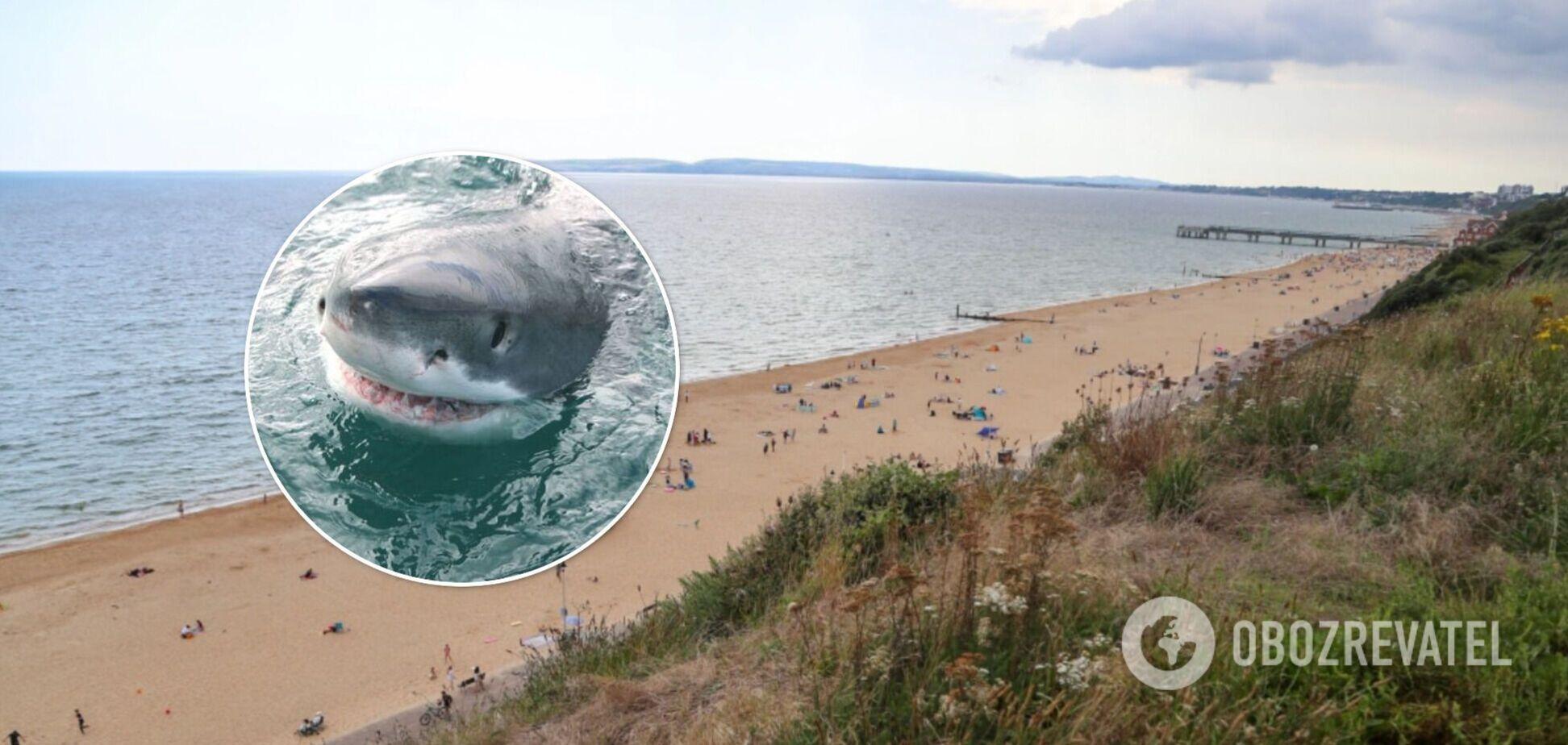 Рибак схопився з «акулою-монстром»