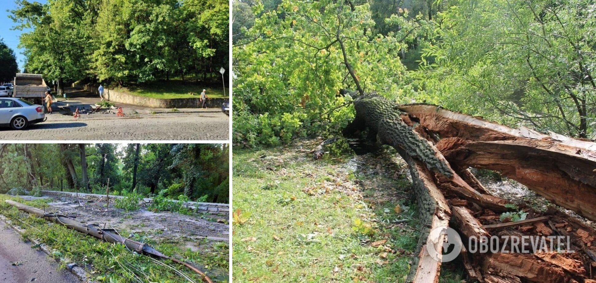Ветер валил деревья и сносил крыши: в Каменце-Подольском пронесся мощный ураган. Фото и видео