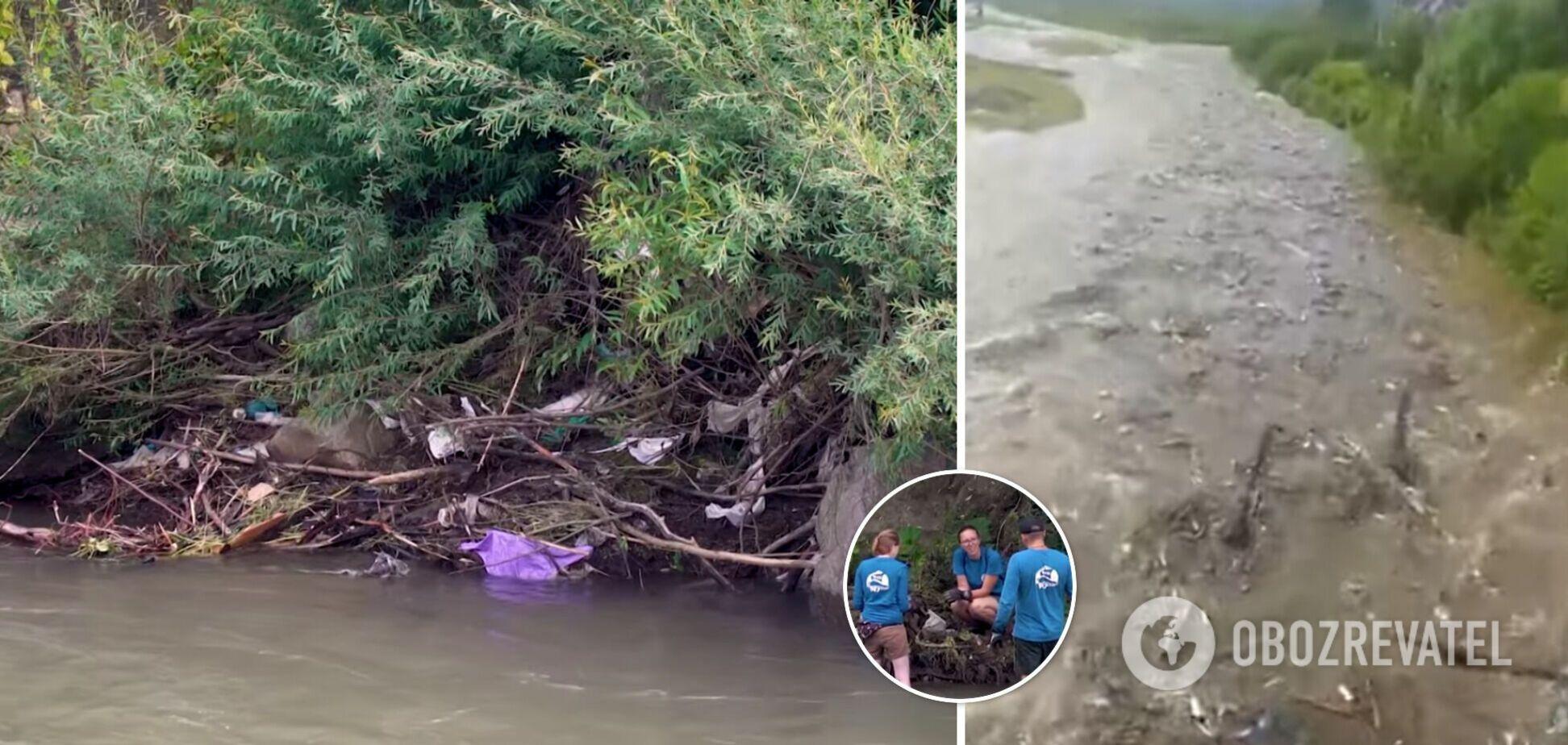 Волонтери прибирали сміття на березі Тиси