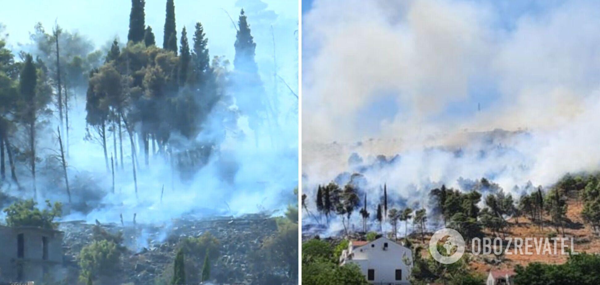 Еще одну страну Европы охватили лесные пожары: огонь добрался к жилым домам. Фото