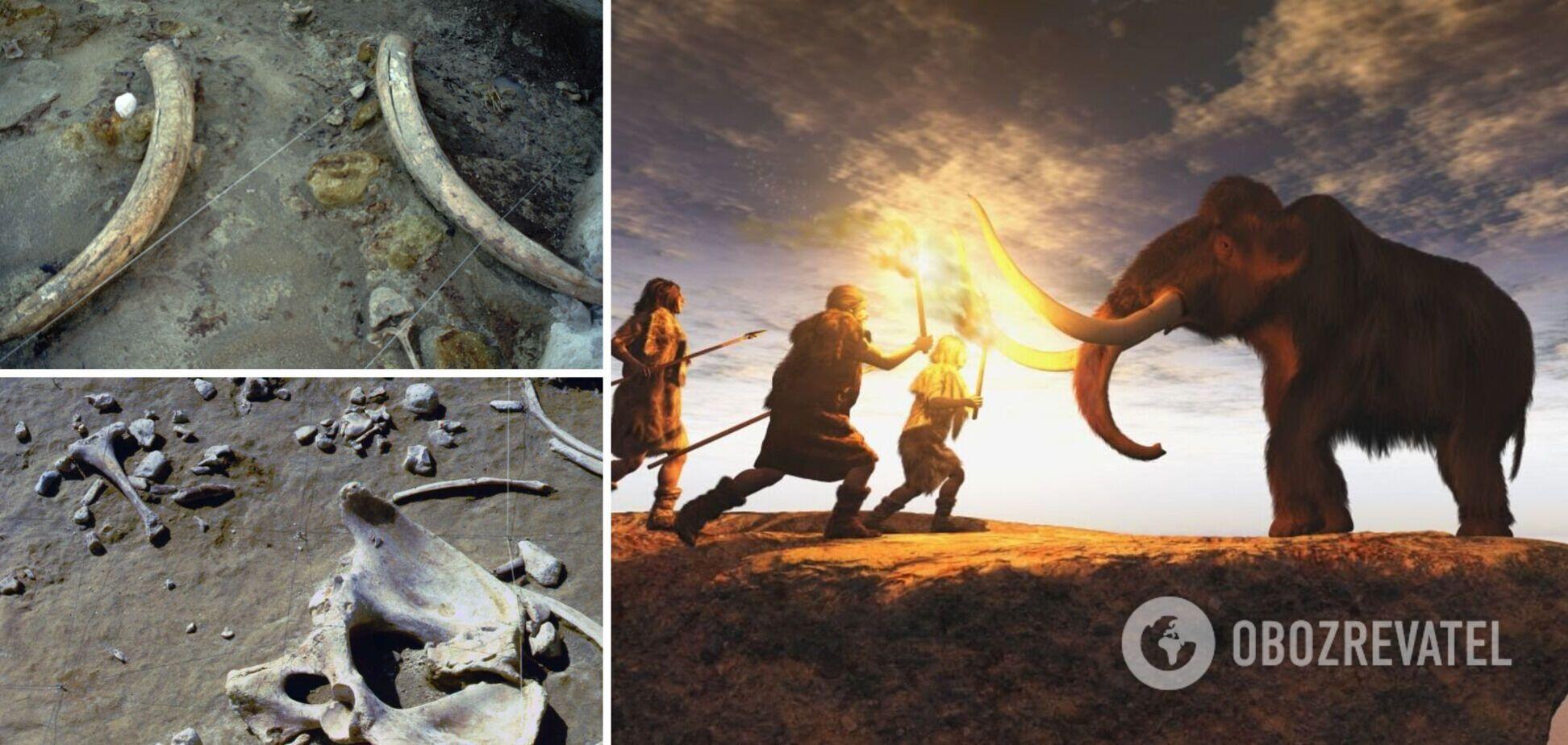 В Італії виявили інструмент, який випередив свій час на 100 тис. років. Фото