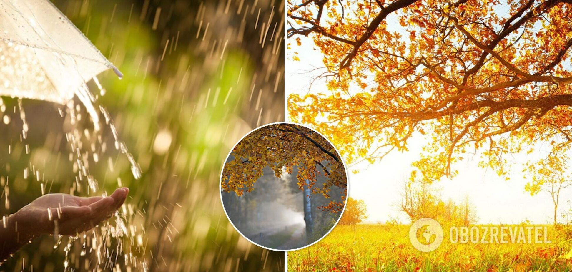 Погода в Украине на 13 сентября