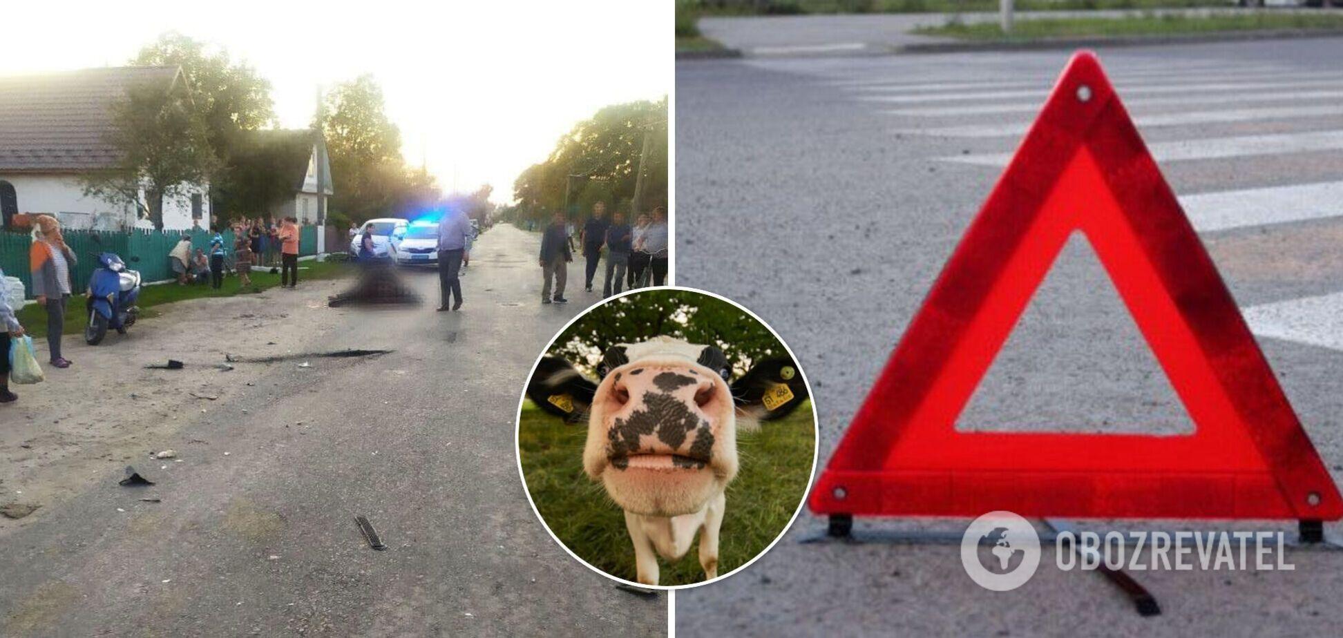 На Ровенщине пьяный водитель влетел в стадо коров и протаранил забор. Фото