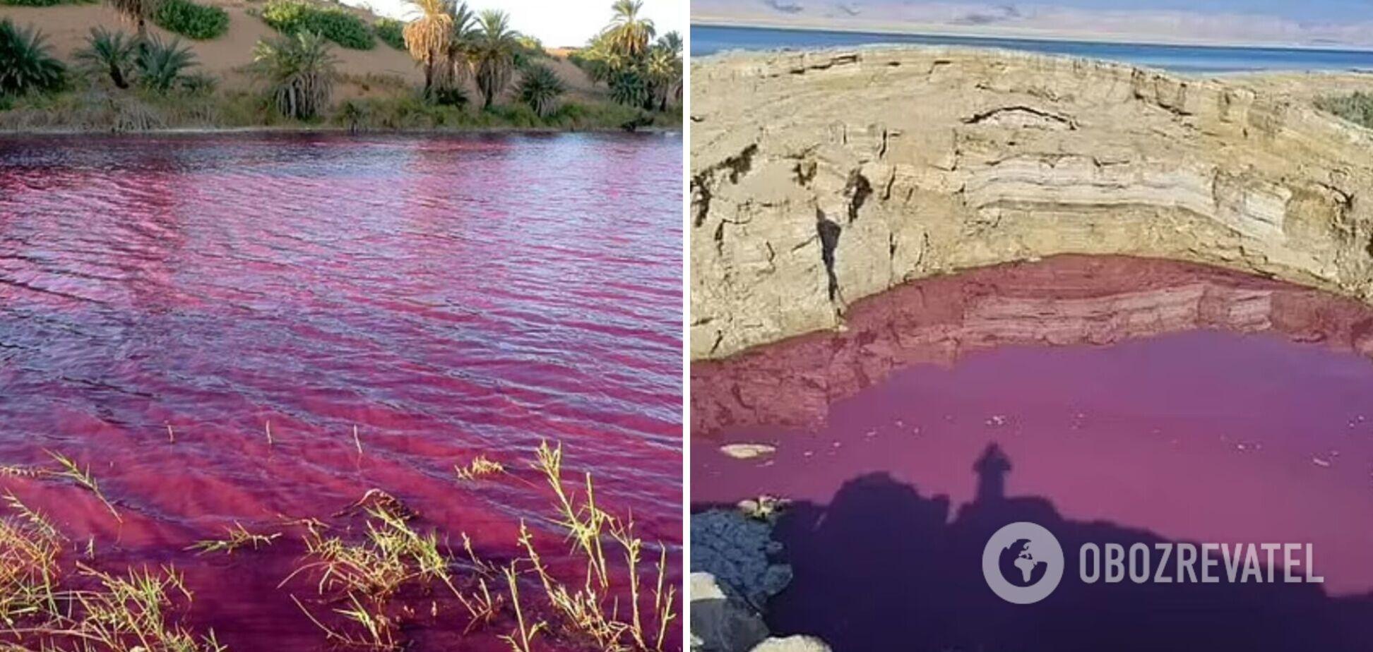 Вода озера в Иордании внезапно окрасилась