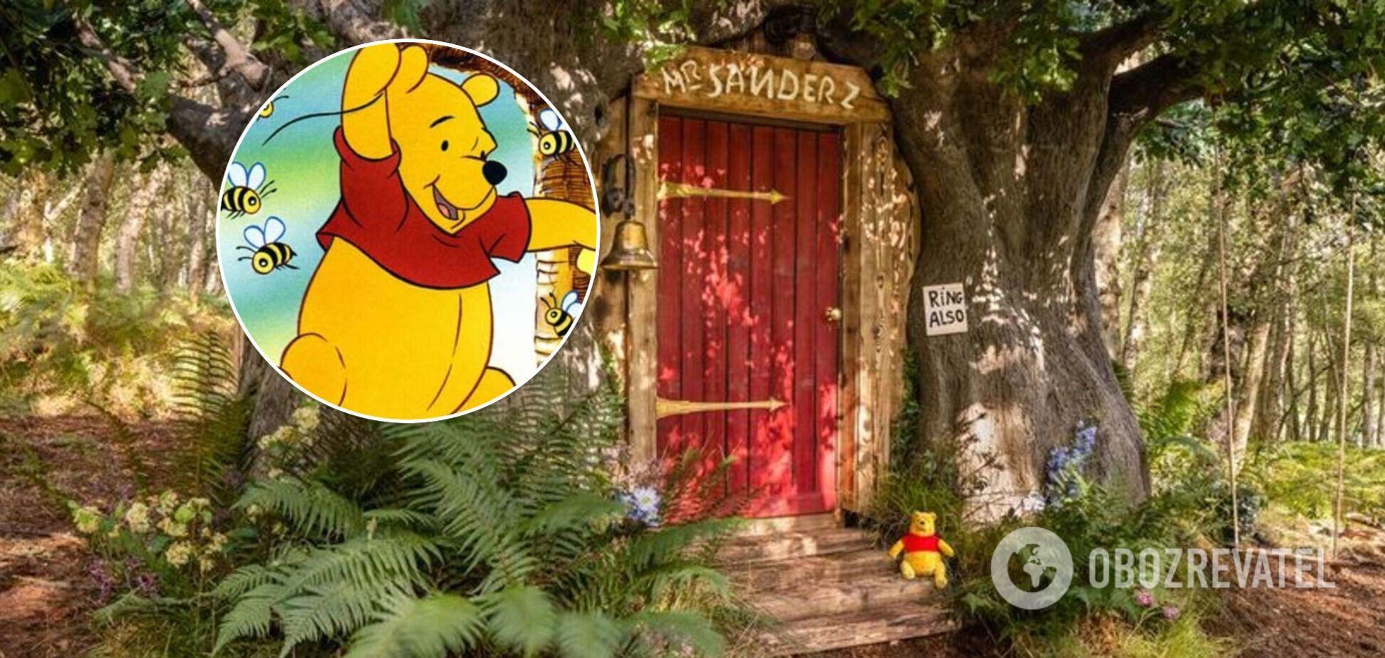 В лесу возле Лондона появился 'домик Винни Пуха' – там можно пожить. Фото