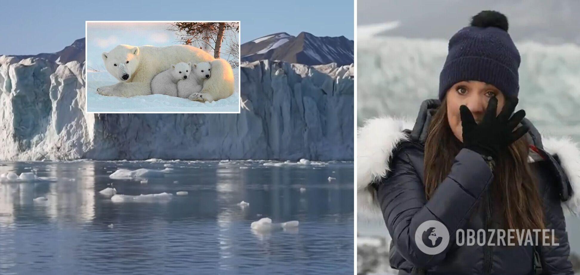 Британская ведущая расплакалась в прямом эфире, рассказывая об изменениях климата. Видео