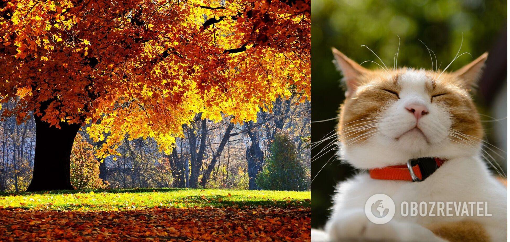 Первая половина октября будет теплее, чем концовка сентября