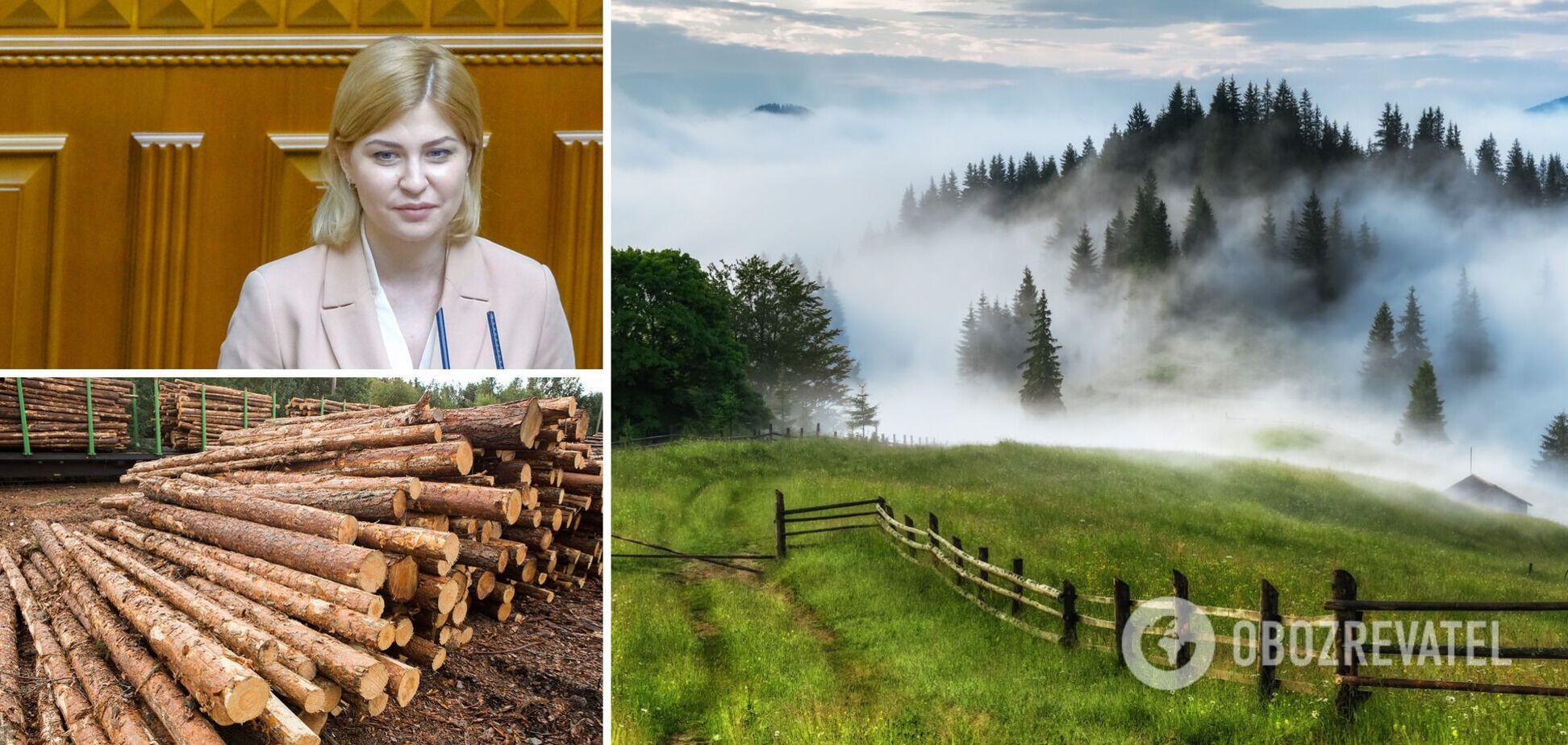 Стефанішина виступила за скасування мораторію на експорт лісу-кругляка